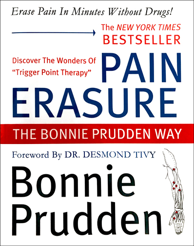 Pain Erasure book