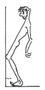 Calf Muscles Test