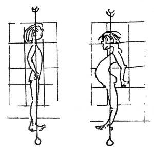 Round shoulder drawing by Bonnie Prudden