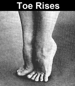 Toe Rises